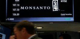Monsanto exige que Avaaz entregue todos los datos de su campaña en contra de la empresa