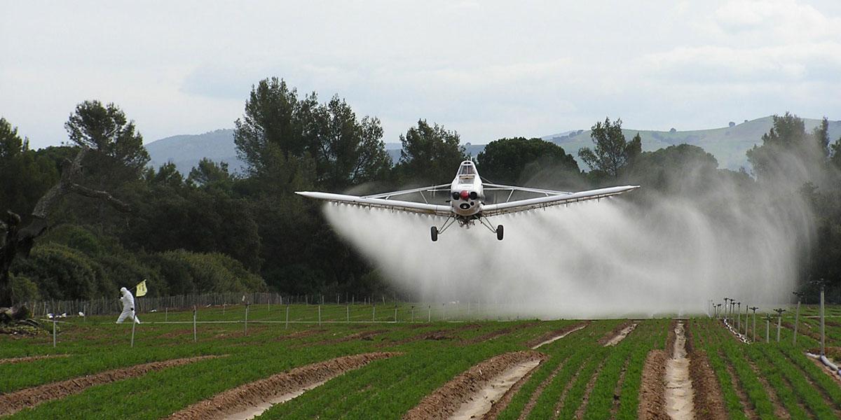 Monsanto a juicio por ocultar el peligro cancerígeno del Glifosato