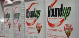 Por tercera vez, Monsanto fue declarado culpable por enfermar a sabiendas del peligro