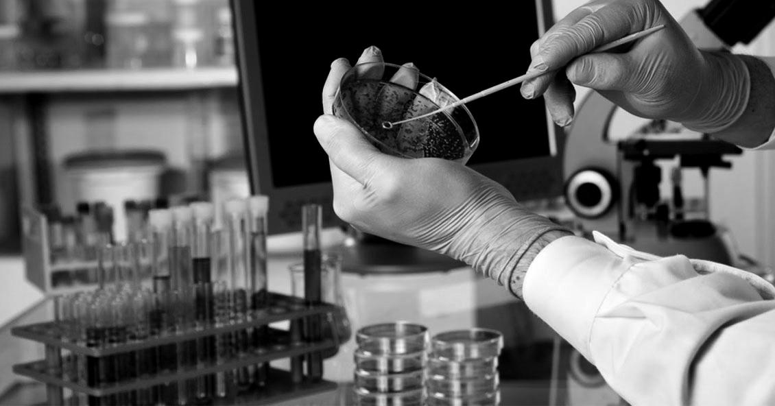 """Las sustancias agregadas al glifosato en los """"productos formulados"""" generan sospechas"""