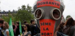 Cómo Monsanto fabricó la campaña de 'indignación' ante la clasificación de su producto como cancerígeno