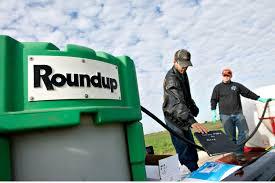 Monsanto al descubierto: La campaña para lograr la retractación del estudio Séralini