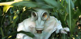 Monsanto fue su propio escritor fantasma en revisiones de seguridad