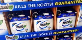 Monsanto dice que sus pesticidas son seguros: la justicia busca que lo pruebe